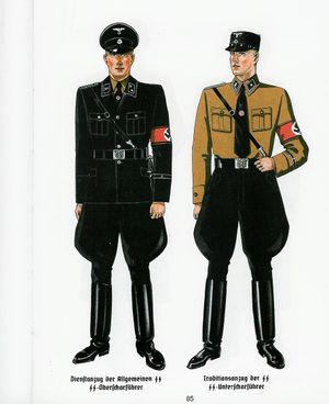 300px-die_uniformen_der_allgemeinen_ss