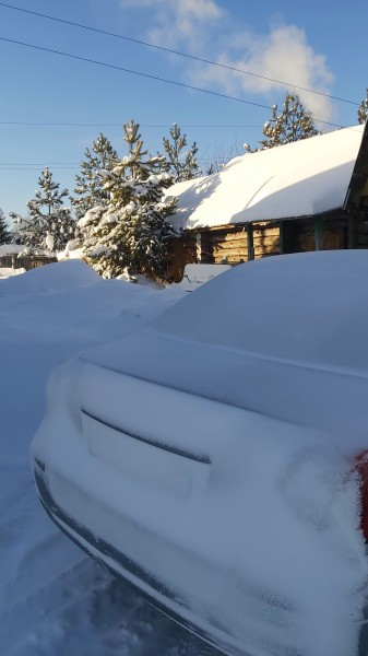 Всемирный день снега. World Snow Day