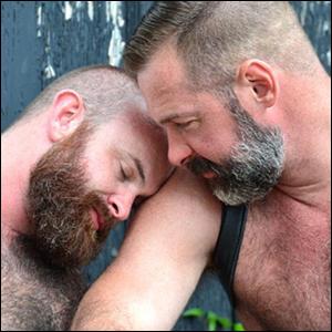 bears14.jpg