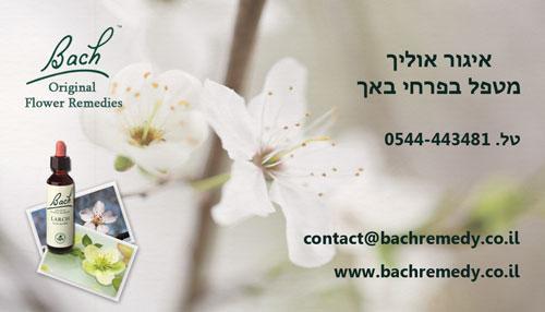 BachBC1_small