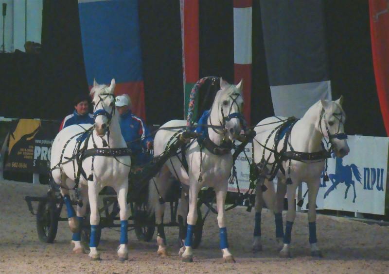 Тройка первого конного