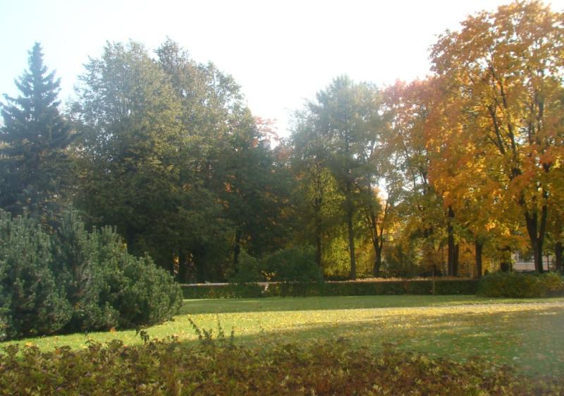 Парк Дворцовая
