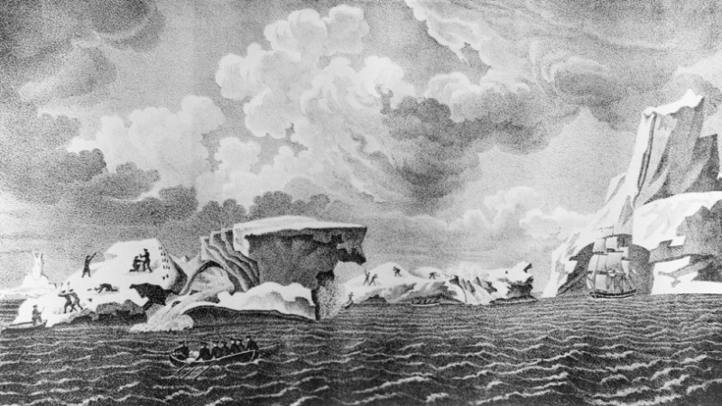Арктика Михайлов Вид ледяных островов