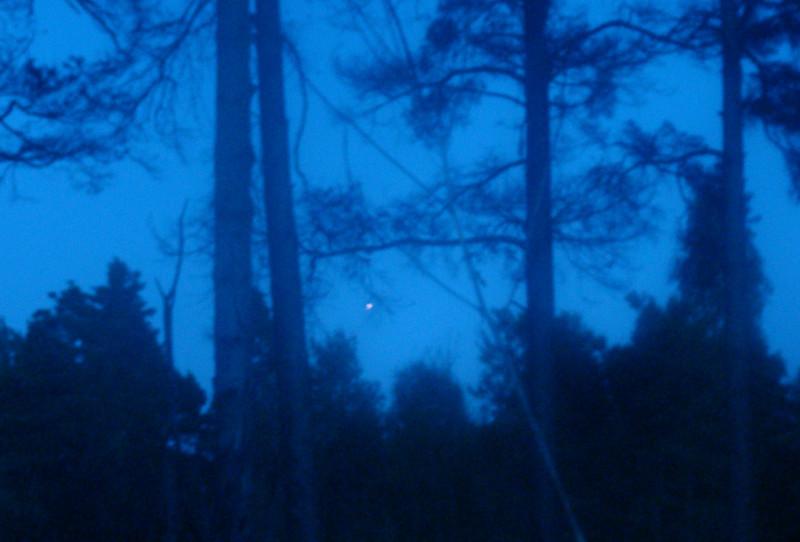 Юпитер 13 августа 21.53 Ленинградская область