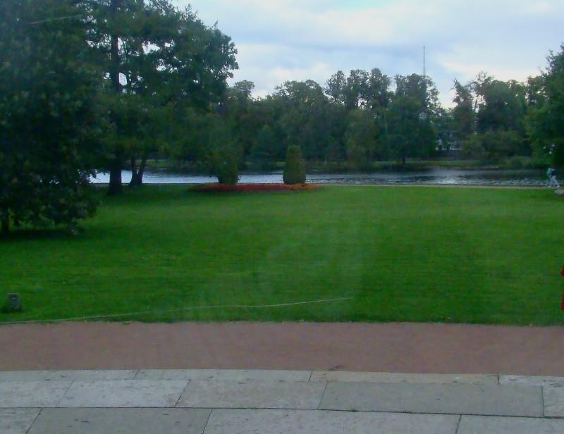 Вид из окна первого этажа Елагиноостровского дворца