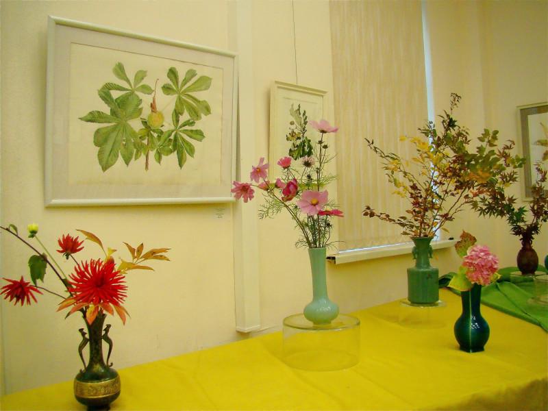 Выставка ботанической живописи Ботсад Петра Великого