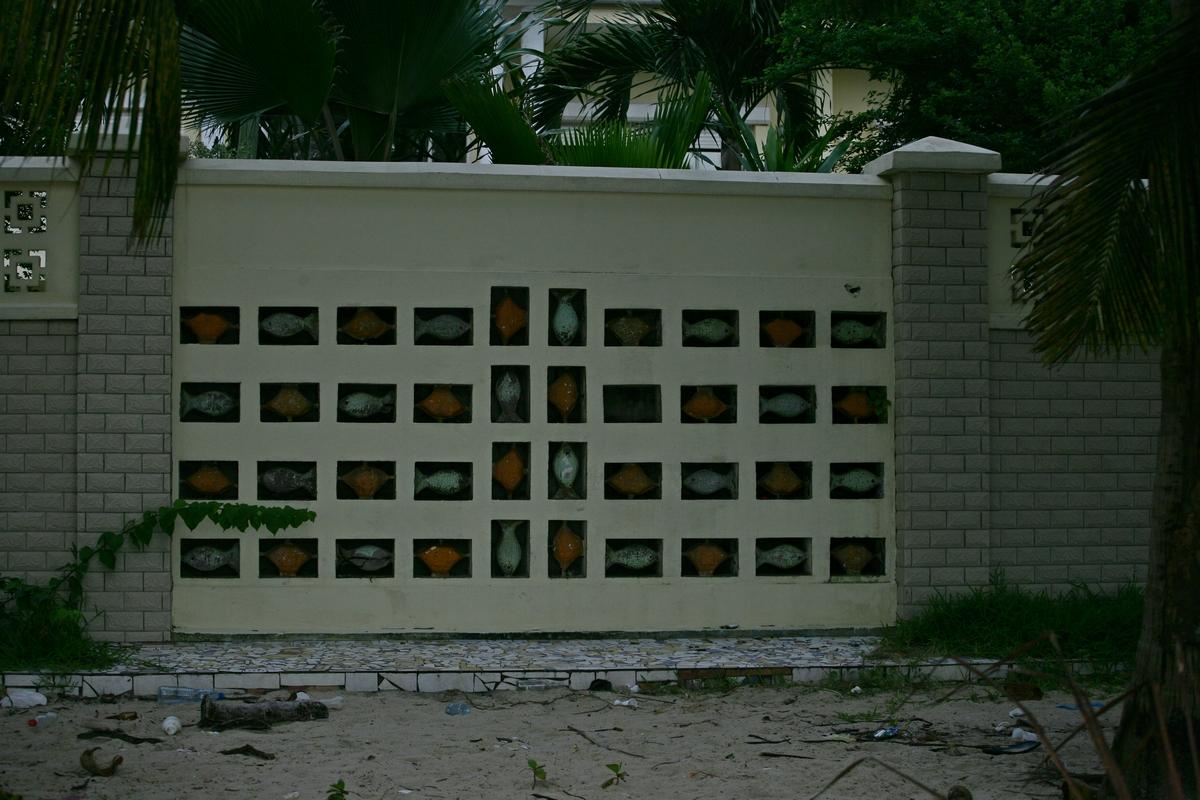 VI0B0596