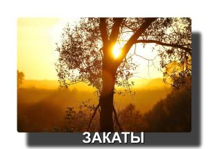 _Q0A2793