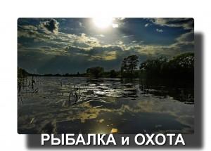 _Q0A8660