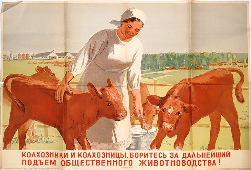 Правительство проведет экстренное заседание по нехватке кормов для частных сельхозпроизводителей