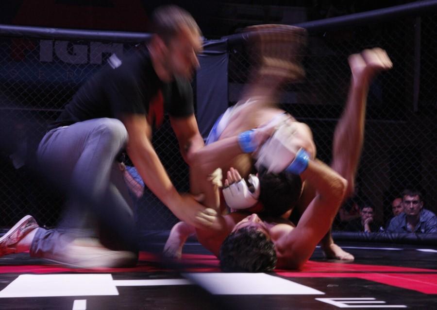 MMA-15.jpg