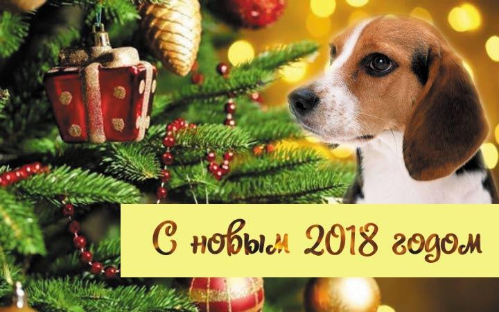 Поздравления-С-Новым-годом-собаки-2018-картинки-и-открытки-2