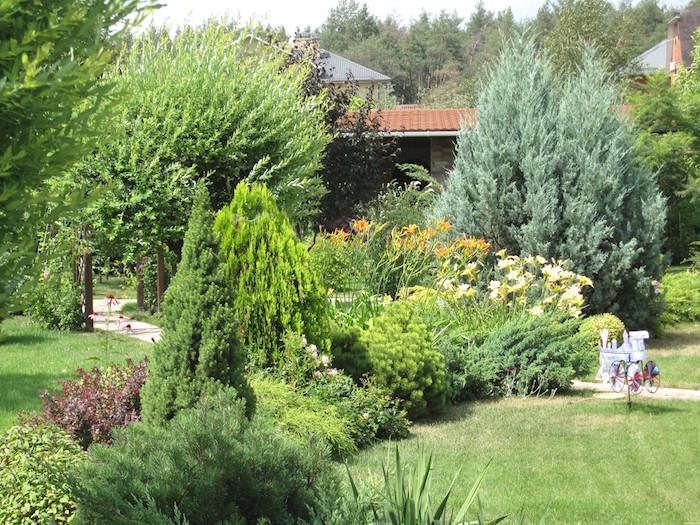 Растения и товары для сада