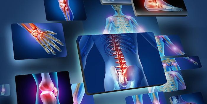 10 малоизученных частей тела человека