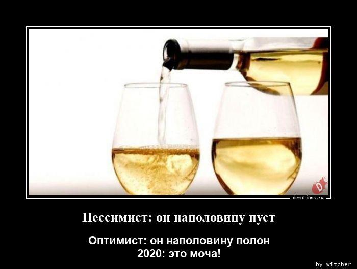 1598349036_Pessimist-on-napolov.jpg