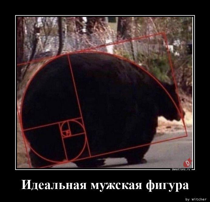 1599144447_Idealnaya-muzhskaya-.jpg