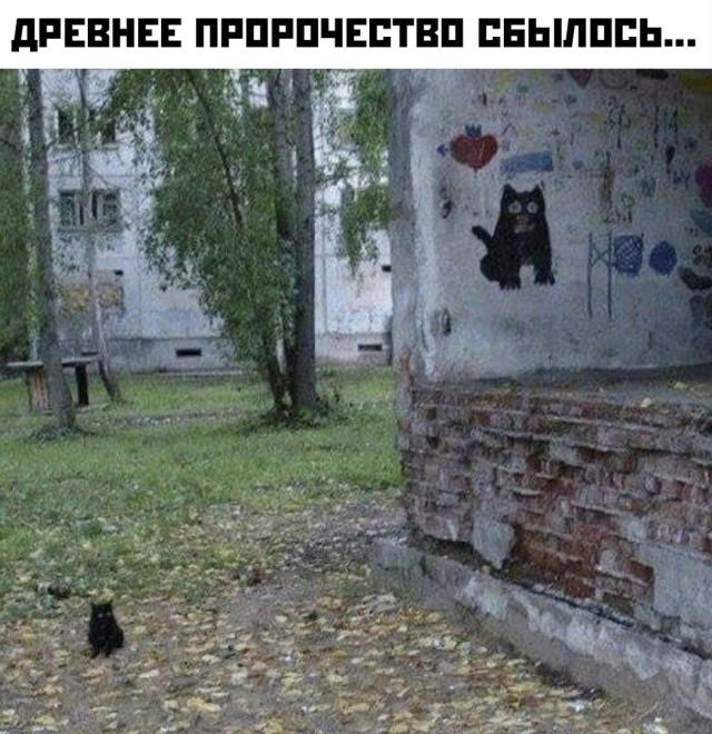 1602794638_podborka-53.jpg