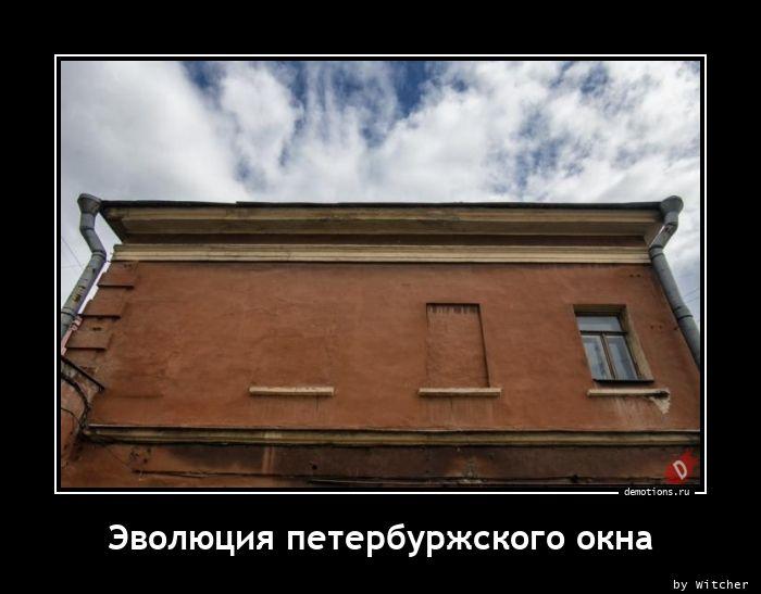 1608639366_Evolyuciya-peterburz.jpg