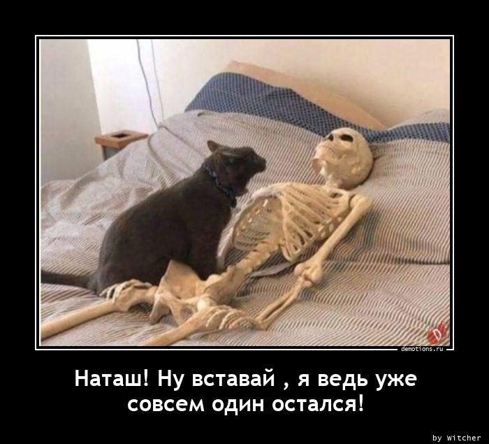 1608634940_Natash-Nu-vstavay-ya.jpg
