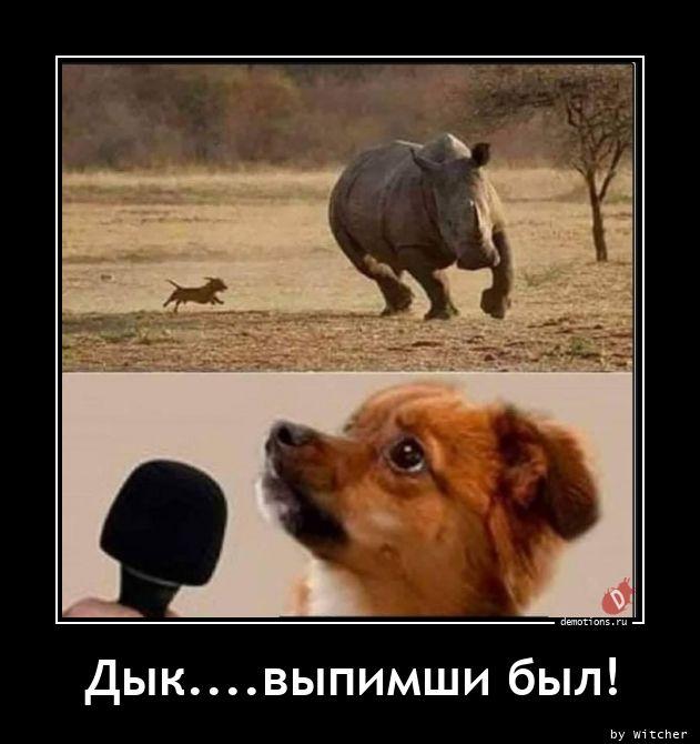 1609928450_Dyk.vypimshi-byl.jpg