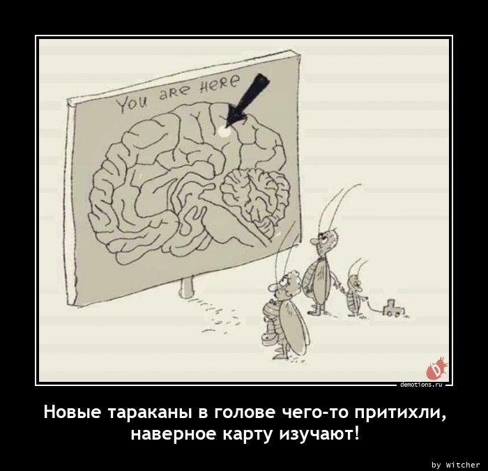 1611393786_Novye-tarakany-v-gol.jpg