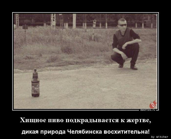 1612279135_Hischnoe-pivo-podkra.jpg