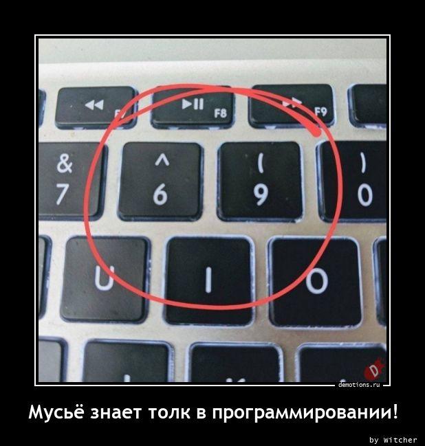 1612681221_Muse-znaet-tolk-v-pr.jpg