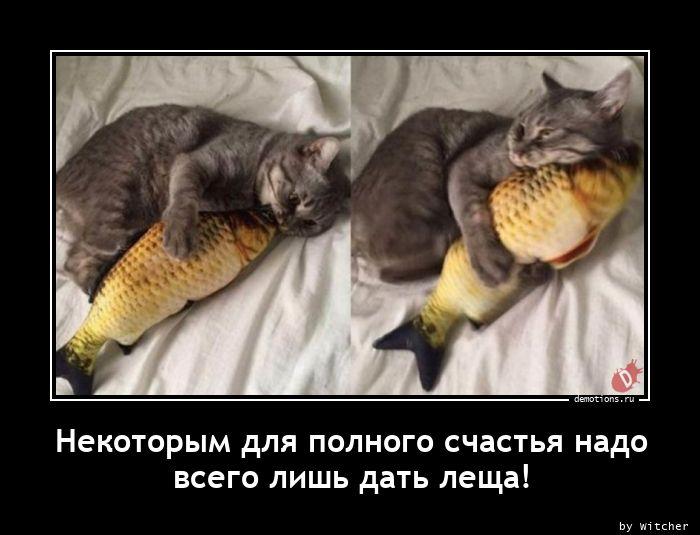 1613720979_Nekotorym-dlya-polno.jpg