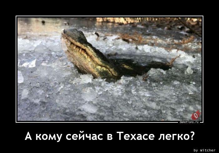 1613725665_A-komu-seychas-v-Teh.jpg