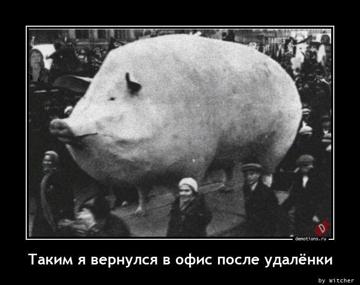 1613902168_Takim-ya-vernulsya-v.jpg
