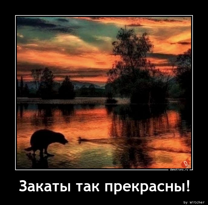 1613467286_Zakaty-tak-prekrasny.jpg