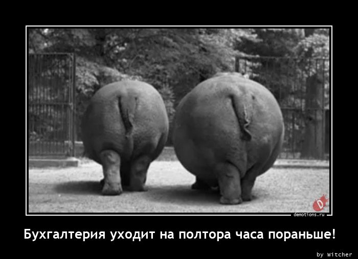 1613477310_Buhgalteriya-uhodit-.jpg
