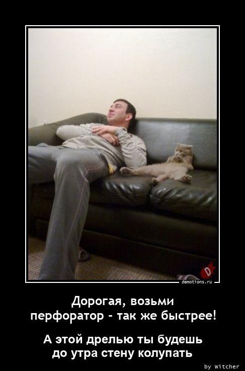 1614095638_Dorogaya-vozmi-perfo (1).jpg