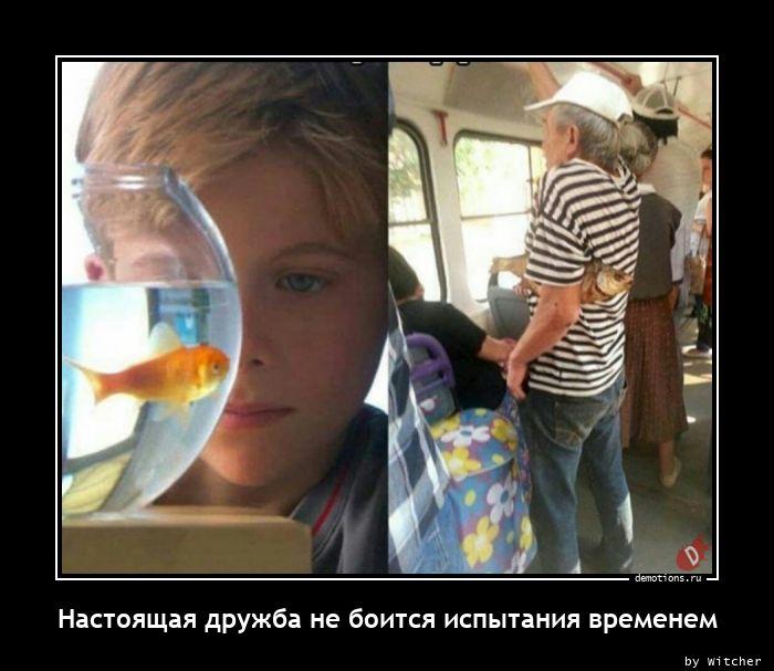 1614663747_Nastoyaschaya-druzhb.jpg