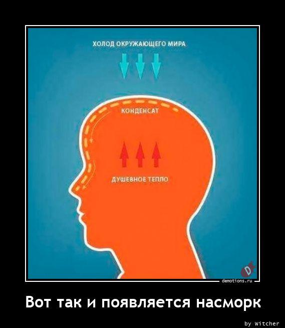 1616337632_Vot-tak-i-poyavlyaet.jpg
