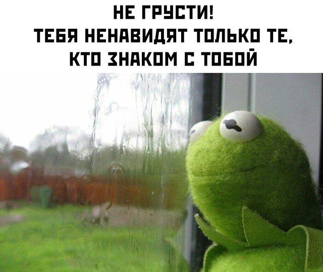 fotopodborka-chetverga-27-foto_26.jpg