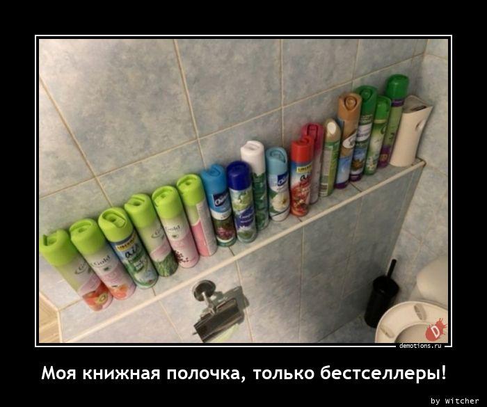 1617787310_Moya-knizhnaya-poloc.jpg