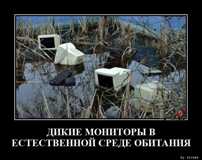 1618395089_DIKIE-MONITORY-V-EST.jpg