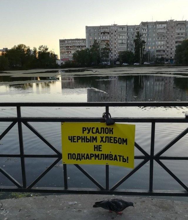 tem_vremenem_v_rossii_30_foto_26.jpg