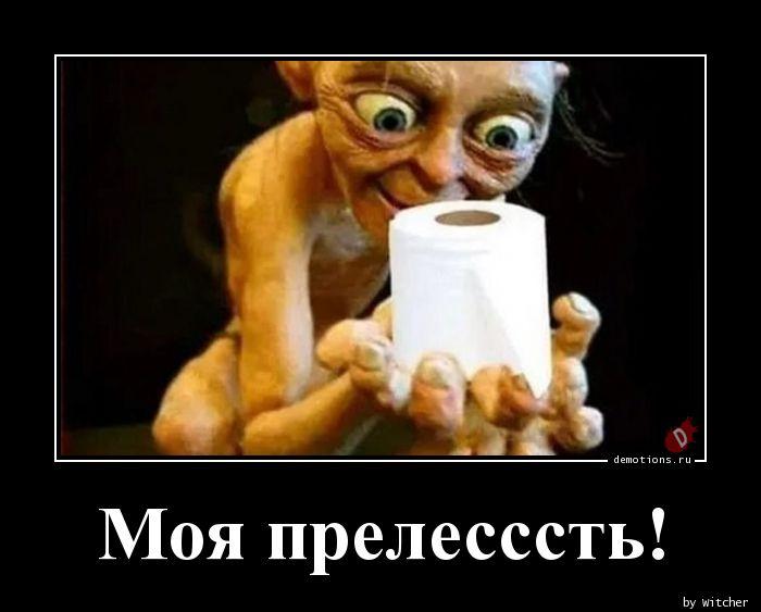 1584890078_Moya-prelessst.jpg