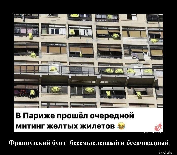 1584883277_Francuzskiy-bunt-bes.jpg