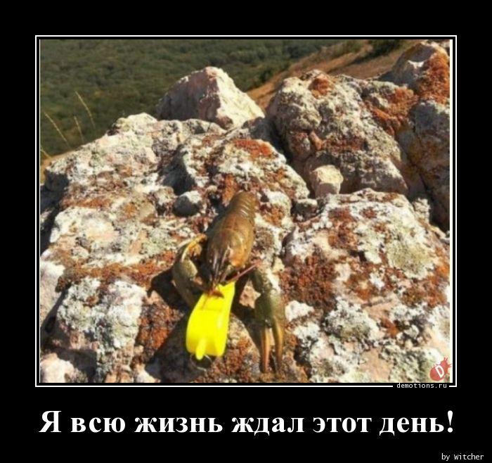 1589027817_Ya-vsyu-zhizn-zhdal-.jpg