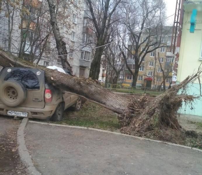 fotopodborka_pjatnicy_54_foto_18.jpg