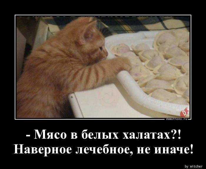 1589475049_-Myaso-v-belyh-halat.jpg