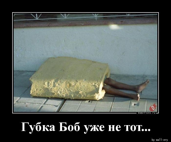 1590079900_Gubka-Bob-uzhe-ne-to.jpg