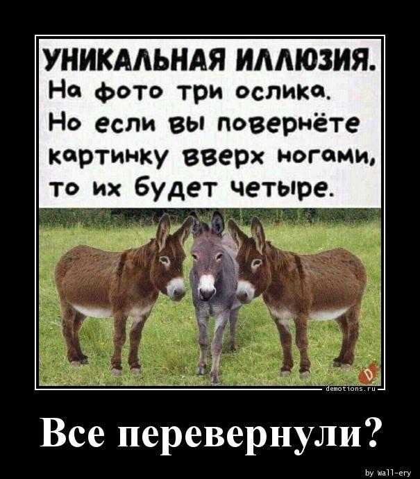 1590913455_Vse-perevernuli.jpg