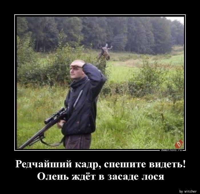 1590849234_Redchayshiy-kadr-spe.jpg