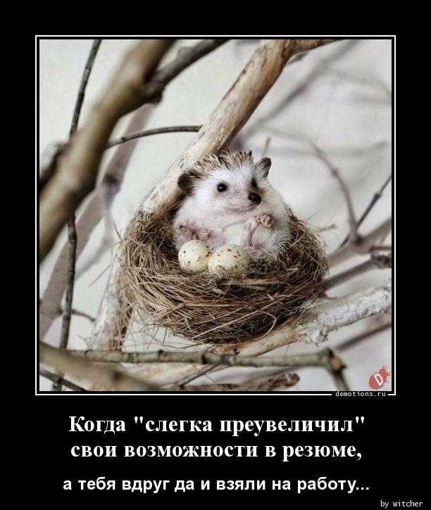 1590828069_Kogda-slegka-preuvel.jpg