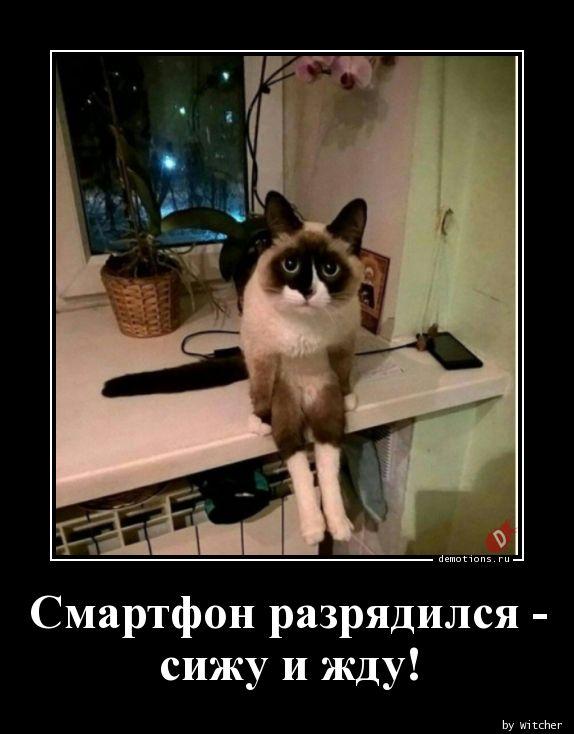 1590828002_Smartfon-razryadilsy.jpg