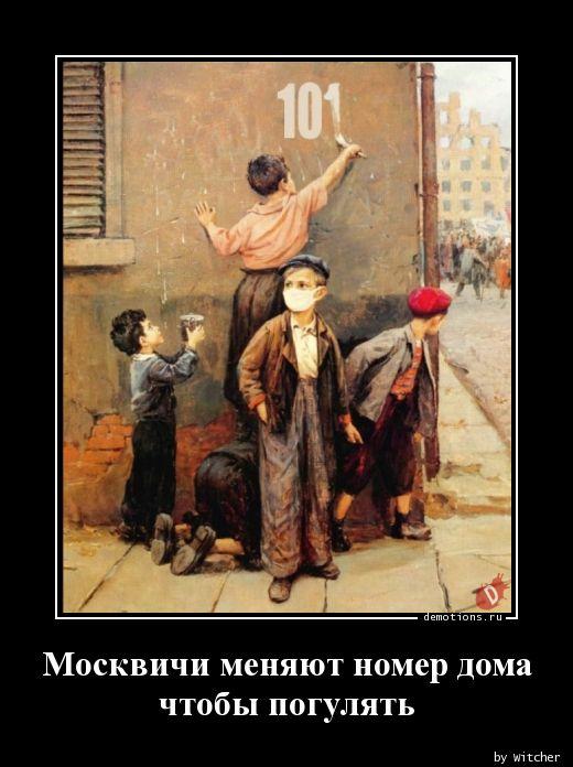 1590770325_Moskvichi-menyayut-n.jpg